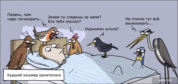 Анекдот Про Птичку