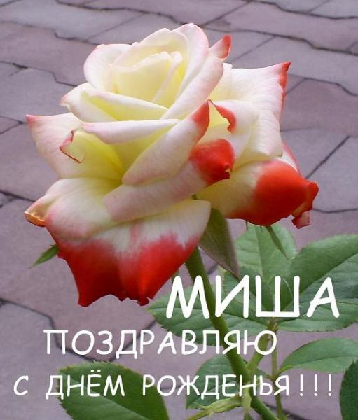 Поздравительная открытка с днем рождения михаилу 33