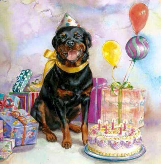 Открытку, открытки на рождение собаки