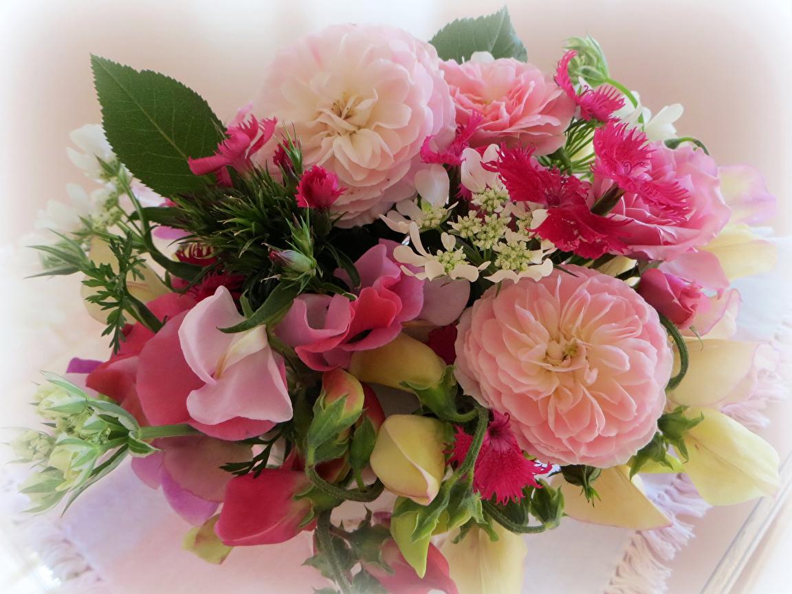 красивые открытки с цветами с днем кардашьян показала жаркие