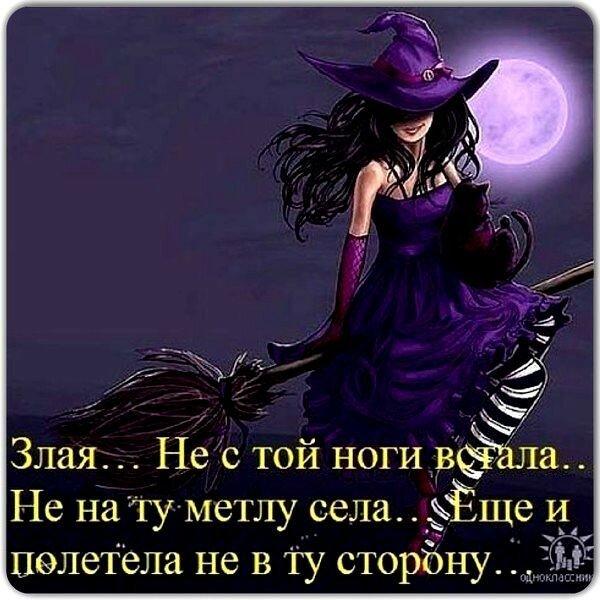 картинка доброе утро с ведьмой каждый день