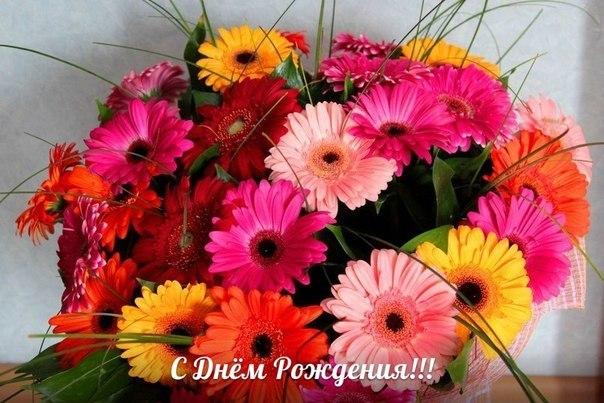 https://ph0.qna.center/storage/photos/sergeyruss/1276113.jpg