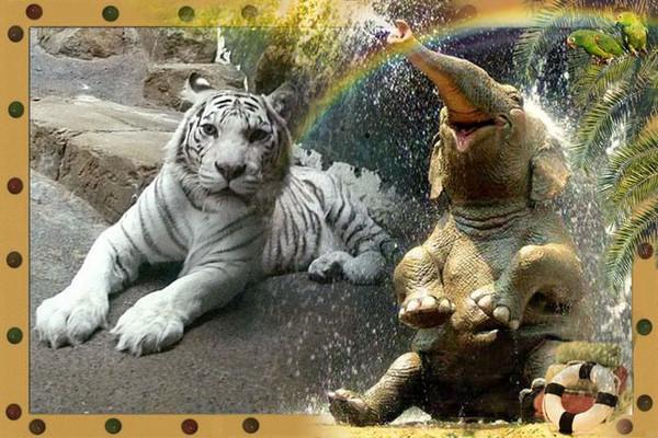 Слон и тигр картинки