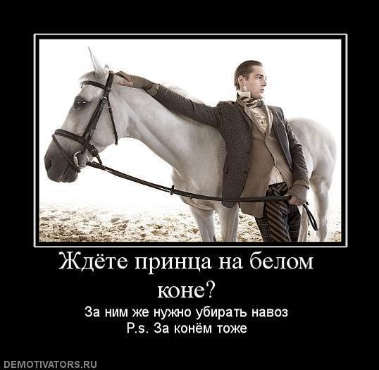 Прикольная картинка принц на белом коне, открытки февраля