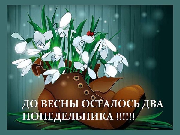 https://ph0.qna.center/storage/photos/zirronika/1343519.jpg